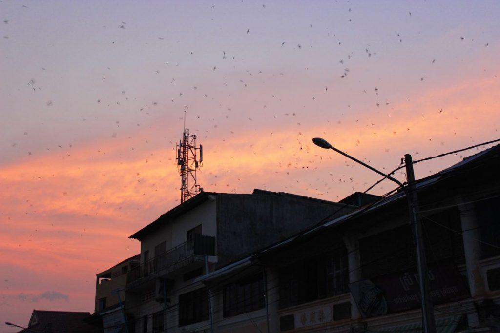 sunset Kampot Cambodia