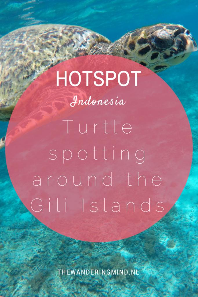Schildpadden Gili Islands