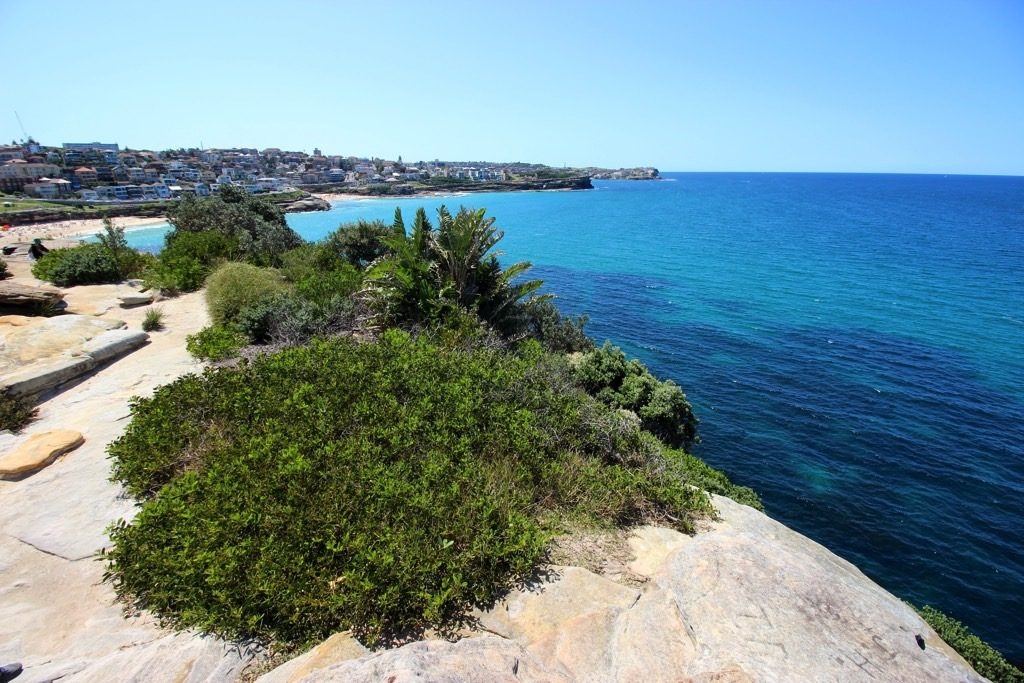 Bondi to Coogee View