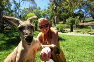 Kangaroo Gorge Wildlife Park Four Months Traveling