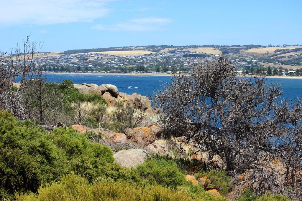 Travel Diary Granite Island Victor Harbor