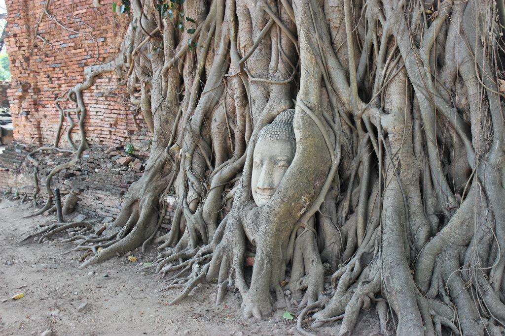 Itinerary for Thailand | Wat Phra Mahathat | Ayutthaya