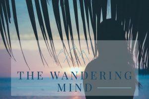 The Wandering Mind nieuw design