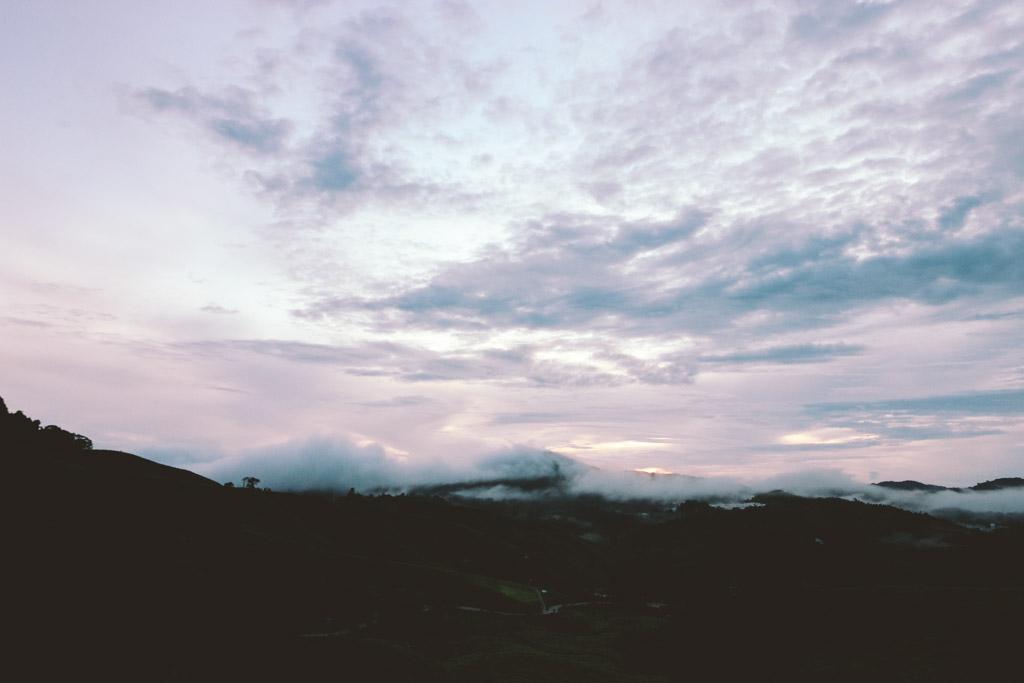 Sunrise | Cameron Highlands | Tea Plantation | Gunung Brinchang | Malaysia