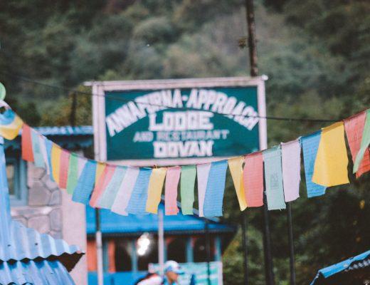 Bamboo | Dovan | Himalaya | Deurali | ABC | Annapurna | Hiking | Nepal