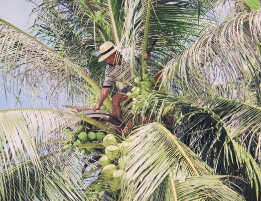 Maandoverzicht november | Vietnam | Phu Quoc |