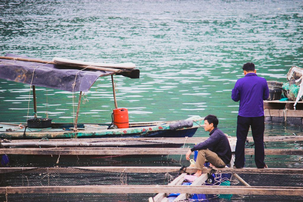 Fishing Man | Halong Bay | Vietnam | Cat Ba Island