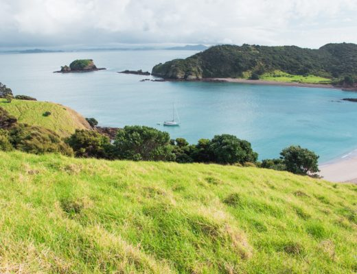 Stingray Cove | Bay of Islands | Paihia | She's a Lady Sailing