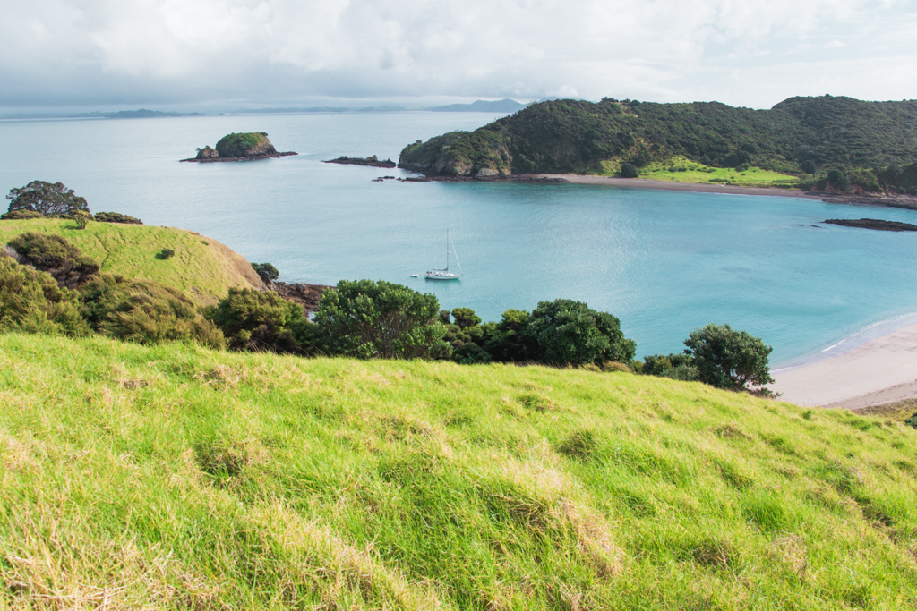 Stingray Cove | Bay of Islands | Paihia | She's a Lady Sailing