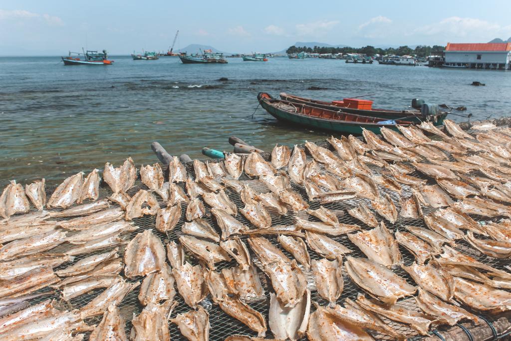 Phu Quoc | Vietnam | Zuid-Vietnam | Zuidoost-Azië | Gedroogd vis | eiland