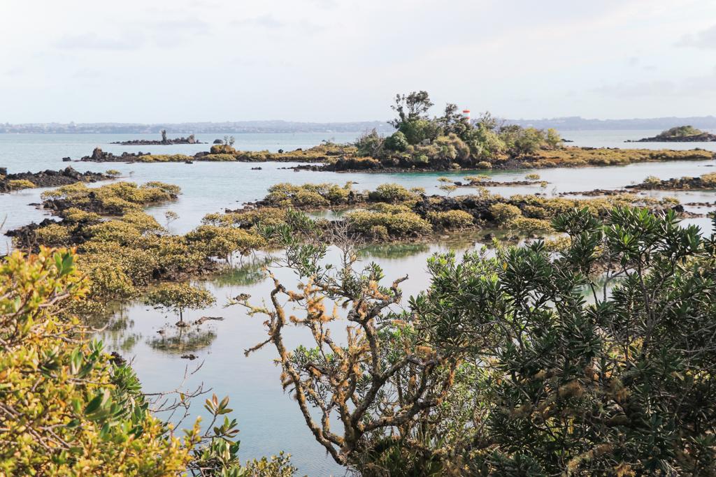 Rangitoto Island | Auckland | Noordereiland | Nieuw-Zeeland