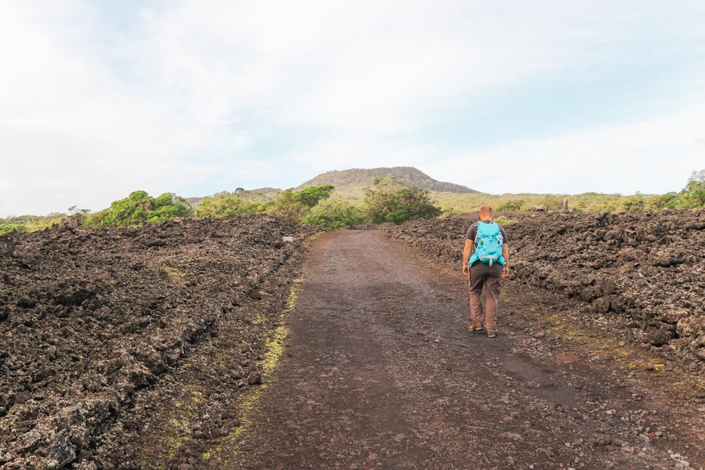 Lava | Vulkanisch eiland | Rangitoto