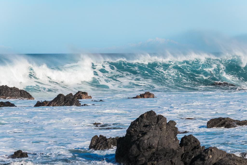 Zuidereiland | Cape Palliser | Noordereiland | Nieuw-Zeeland
