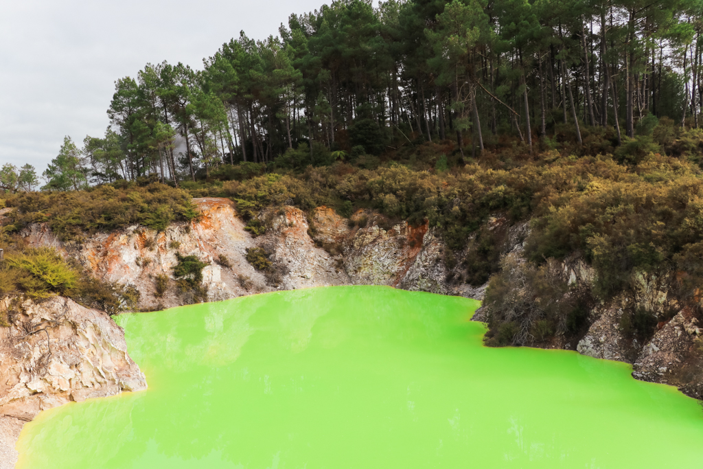 Wai-O-Tapu Thermal Wonderland | Geothermisch park | Rotorua | Noordereiland | Nieuwzeeland