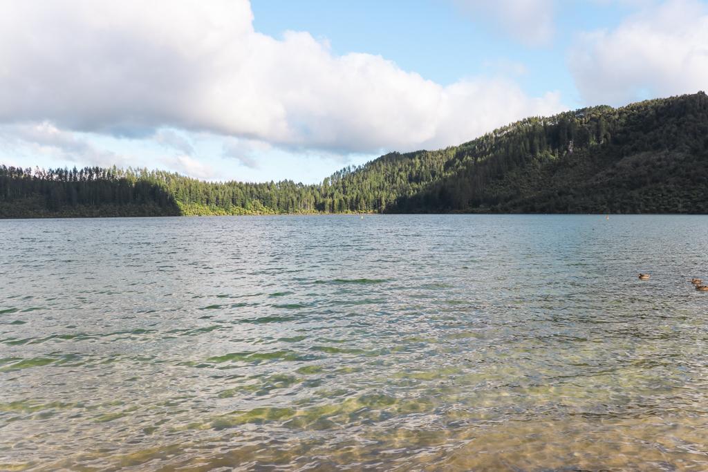 Green Lake | Rotorua | Lake Rotokakahi | Noordereiland | Nieuw-Zeeland