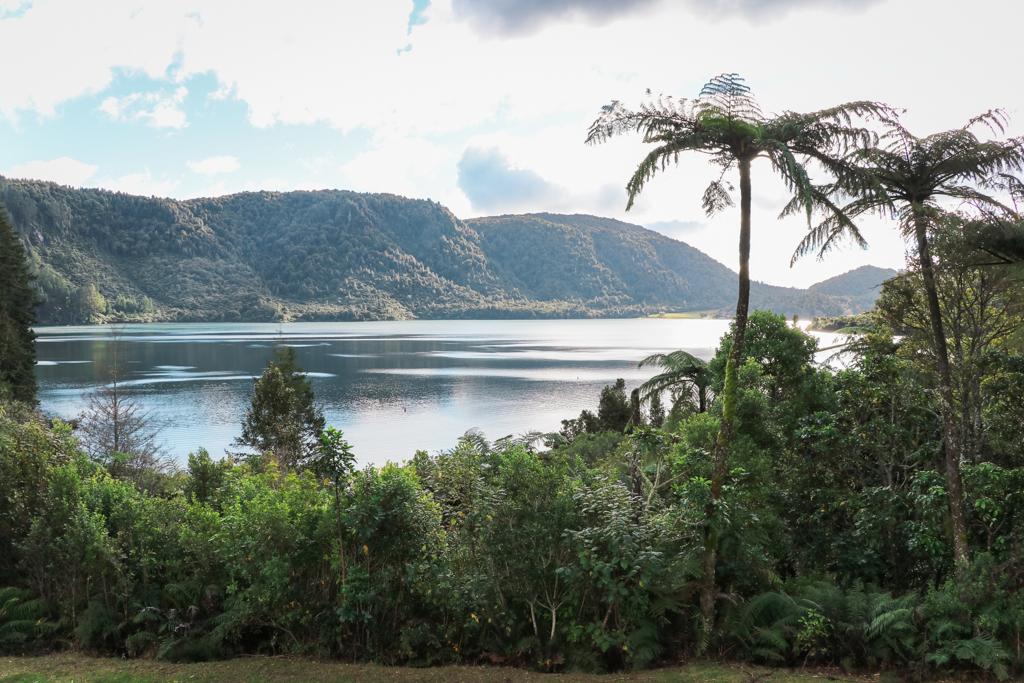 Blue Lake | Lake Tikitapu | Rotorua | Natuur | Noordereiland | Nieuw-Zeeland