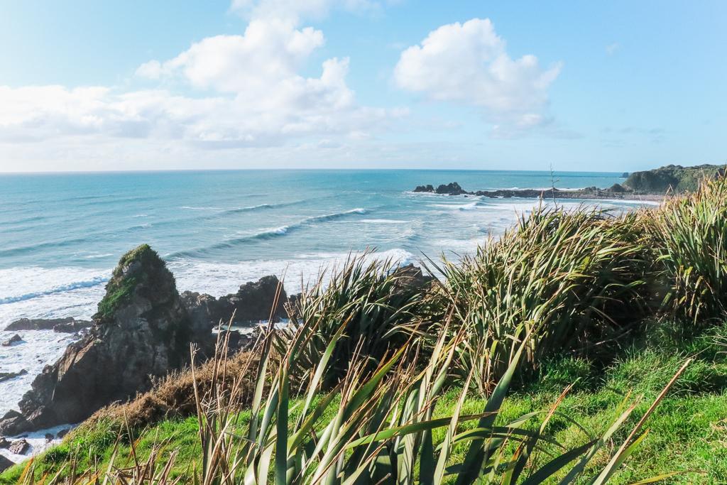 Cape Fowlwind | Zuidereiland | Nieuw-Zeeland