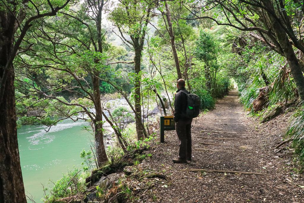 Charming Creek Walkway Tram | Zuidereiland | Nieuw-Zeeland