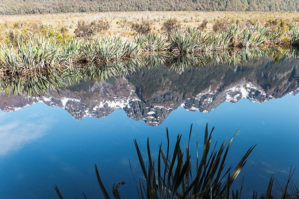 De Mirror Lakes aan de Milford Road naar Milford Sound zijn een stop waard.