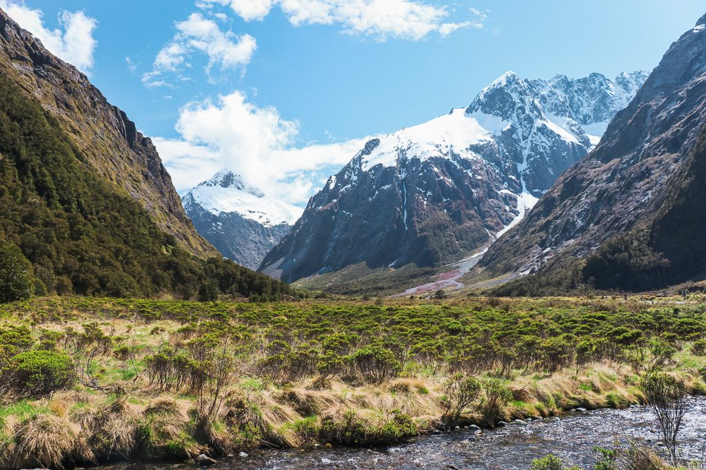 The Monkey Creek on the South Island of New Zealand is impressive to see.