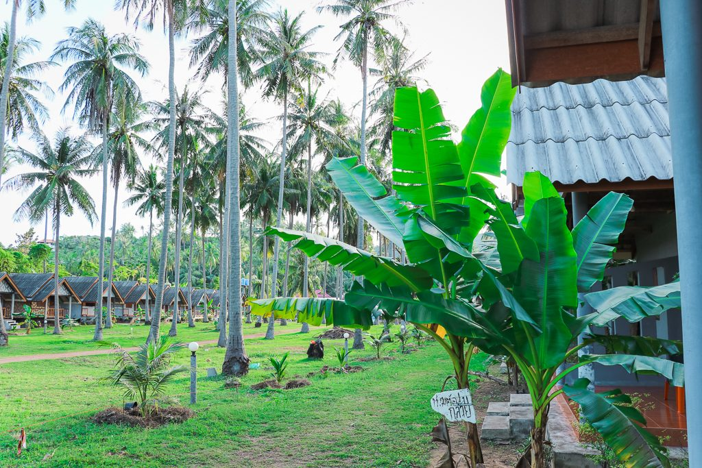 Green Chilli Bungalow Koh Lanta