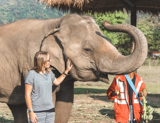 Vrouw naast olifant met slurf omhoog in Elephant Nature Park Chiang Mai