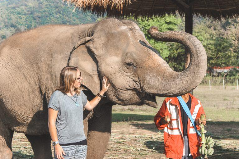Vrouw naast olifant met slurf omhoog in Elephant Nature Park Chiang Mai