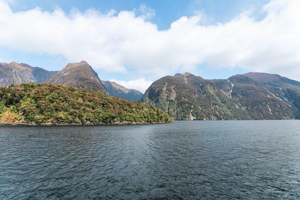 Donker water tegen groene fiord in Doubtful Sound