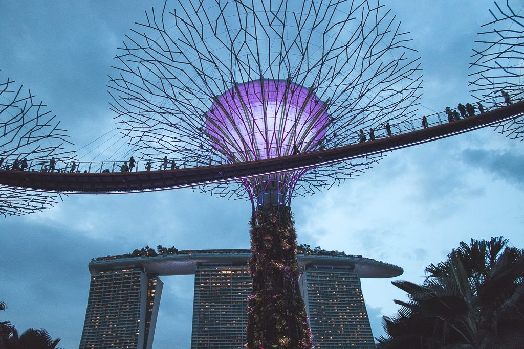 Metalen bomen in Gardens by the Bay