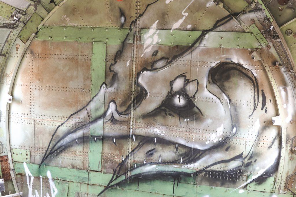 Grijzige vogel van graffiti op vliegtuigdeur.