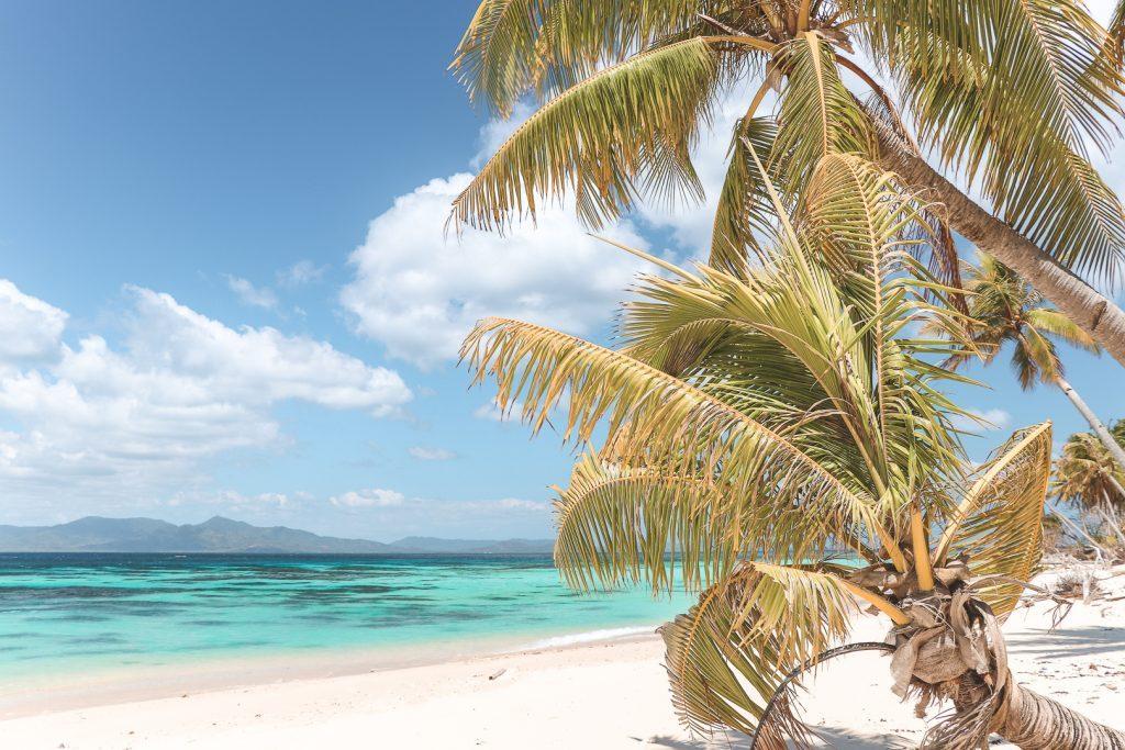 Wit strand met palmboom en azuurblauw water.