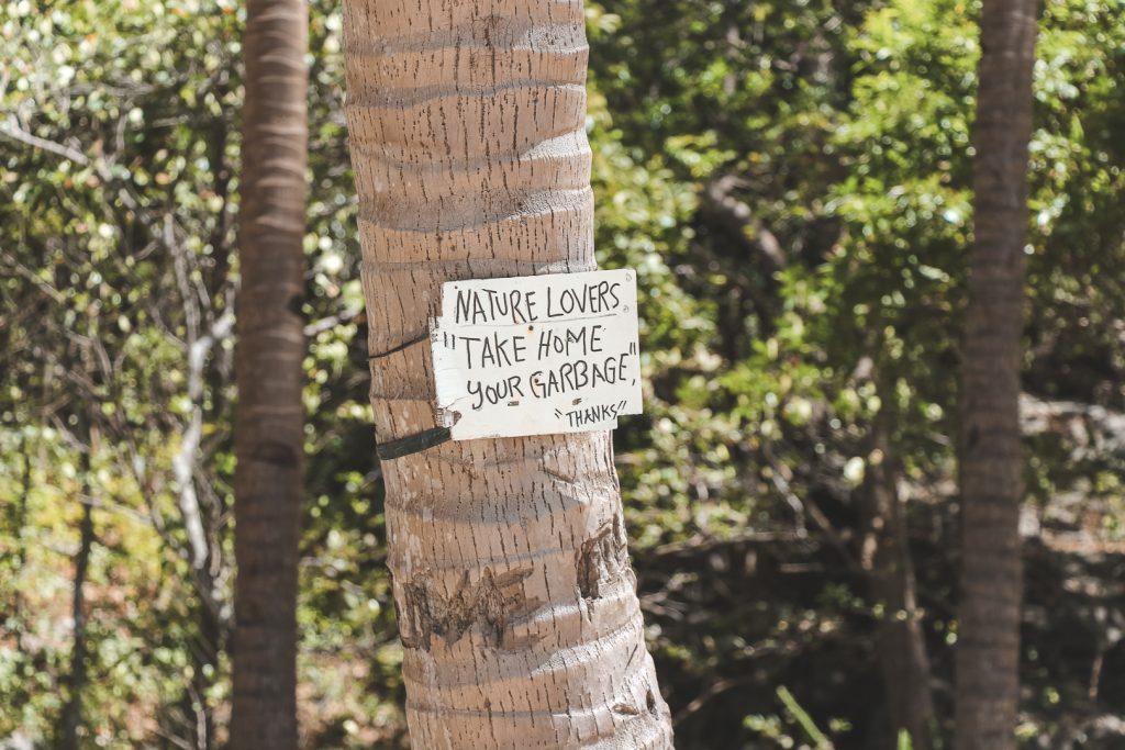 Wit houten bord met zwarte letters aan palmboom.