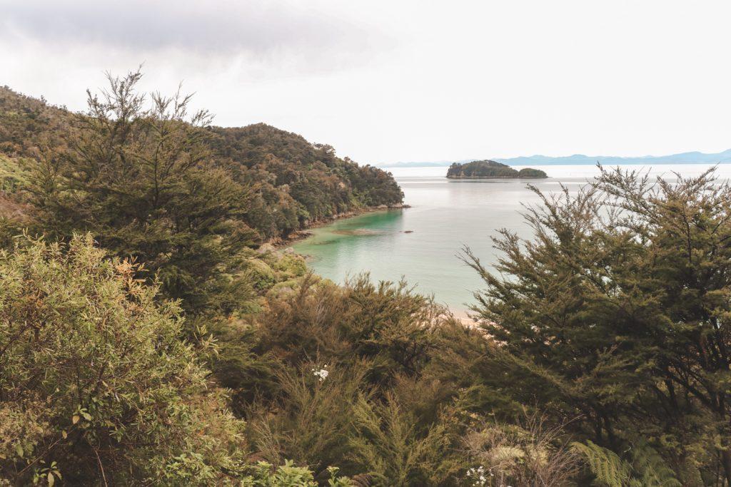 Uitzicht over het groen van Abel Tasman National Park