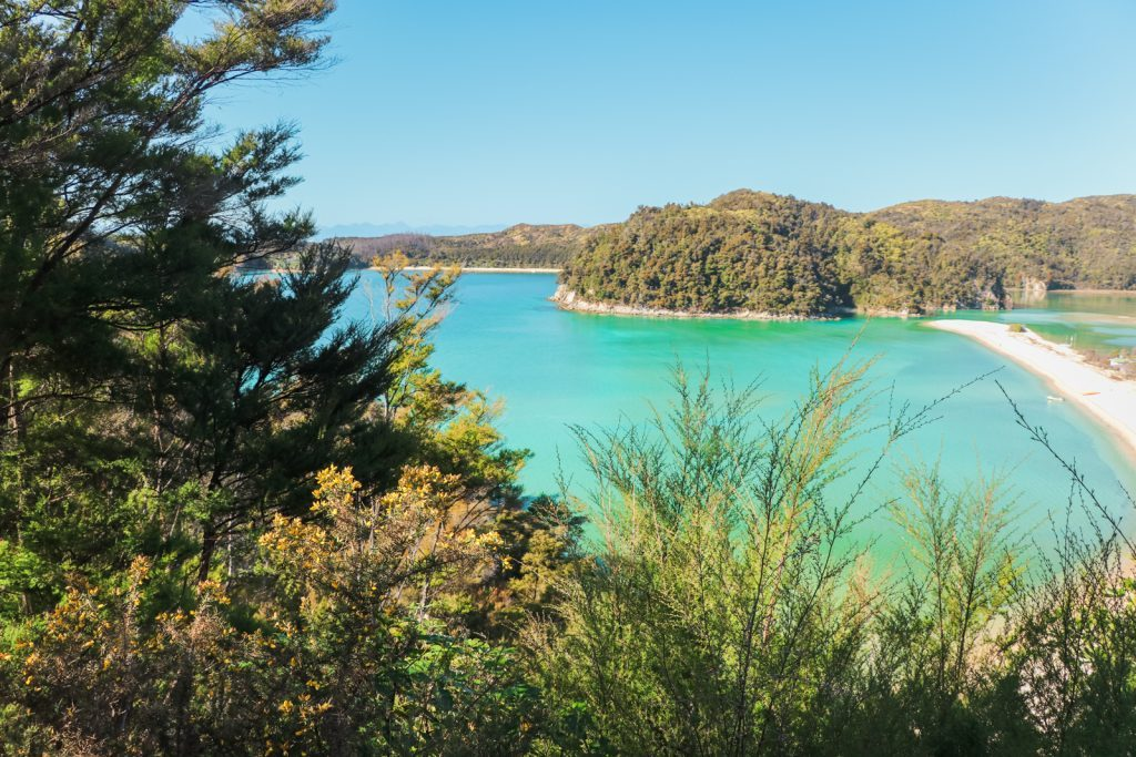 Blauw water in Abel Tasman National Park