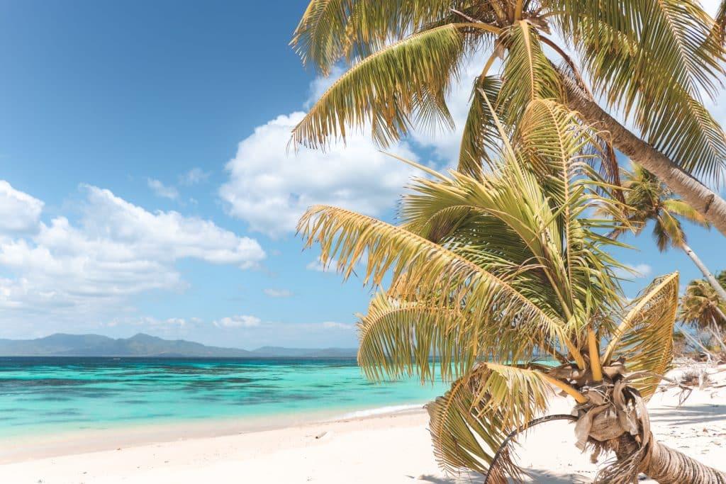 Palmbomen op Pical met wit strand en azuurblauw water